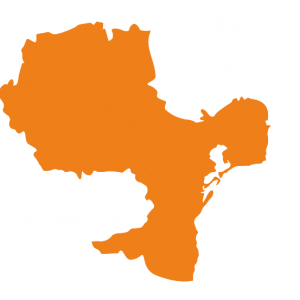 regiunea Sud-est