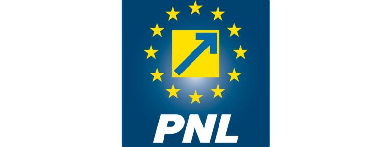 Noul PNL
